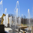 A large fountain in Peterhof — Stock Photo