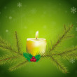 Tree branches and candle on a green background — Foto de Stock