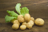 New potatoes and greens — Stock Photo