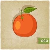 Fruit eco old background — Stok Vektör