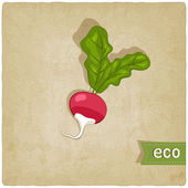 Vegetable eco old background — Vector de stock