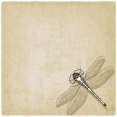 Dragonfly insect old background — Stock Vector
