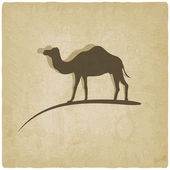 Camel old background — Stock vektor
