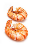 Two Cooked Tiger prawn or Asian tiger shrimp — Stock Photo