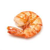 Cooked Tiger prawn or Asian tiger shrimp — Stock Photo