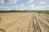 Plowed field. — Stock Photo