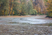 Drained pond — Stock Photo