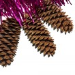 Royalty-Free Stock Photo: Tinsel with cones