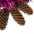 Stock Photo: Tinsel with cones