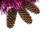 Tinsel with cones — Stock Photo
