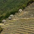 Machu Picchu - Storehouses and Agricultural Terraces — Stock Photo