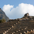 Guardhouse at Machu Picchu, Agricultural Terraces — Stock Photo