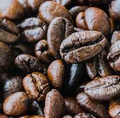 Close up coffee beans — Stock Photo
