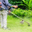 Grass cutting — Stockfoto