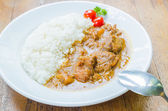Curry rice — Stock Photo