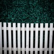 White fence and green grass texture — Stock Photo #33119561