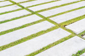 Concrete walk pattern — Stock Photo