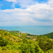 Top of view island in pattaya province — Stock Photo
