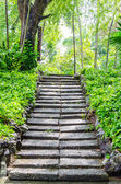 Stone footpath in the garden park — Stock Photo