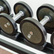 Weight plates — Stock Photo
