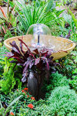 Fountain in the garden park — Stock Photo