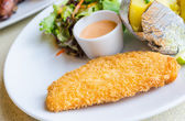 Fried Fish Steak — Stock Photo