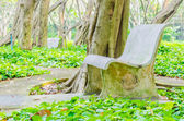Bench in the park — Stock fotografie