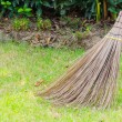 Stock Photo: Broom