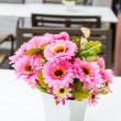 Flowers — Stock Photo
