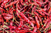 Dried red chilli pepper — Stockfoto