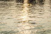 Sun reflection on the river — Stockfoto
