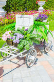 Flower trolley — Stock Photo
