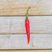 Chilli on wood background — Stock Photo