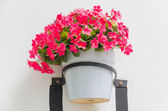 Plastic flower in vase on wall background — Stock Photo