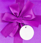 Purple bow — Foto Stock