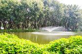 Parco fontana — Foto Stock