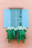 Window with decoration — Stock Photo