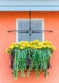 Window with decoration — Stock Photo