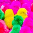 Stock Photo: Color chicks