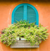 Tuscany window — Stock Photo
