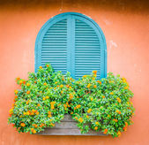 Тоскана окно — Стоковое фото