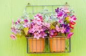 花瓶里的花 — 图库照片