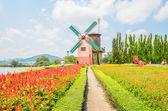 Windmühle im garten — Stockfoto