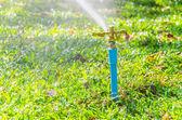 Sprinkler head — Stock Photo