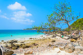Pattaya beach — Stock Photo
