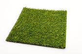 Grass mat isolated white background — Stockfoto