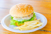 Hamburger and french fries — ストック写真