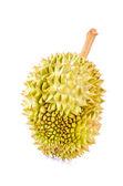 Durian fruit — Stock Photo