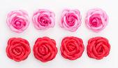 白い背景で隔離の赤いバラ — ストック写真