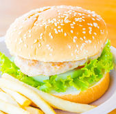 Hamburger and french fries , fast food — Stockfoto